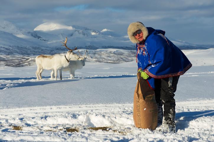 Samiska bloggar